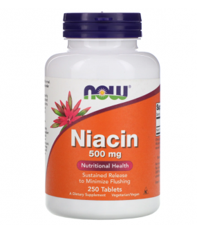 Now Foods Niatsiin 500mg, N250
